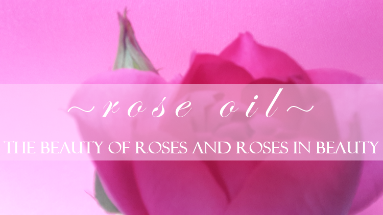 Rose Oil The Beauty of Roses and Roses in Beauty 2017
