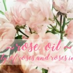 Rose Oil: The Beauty of Roses and Roses in Beauty 2018 Edition