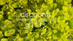 Weekly Discounts and Free Organic Beauty Gifts #117